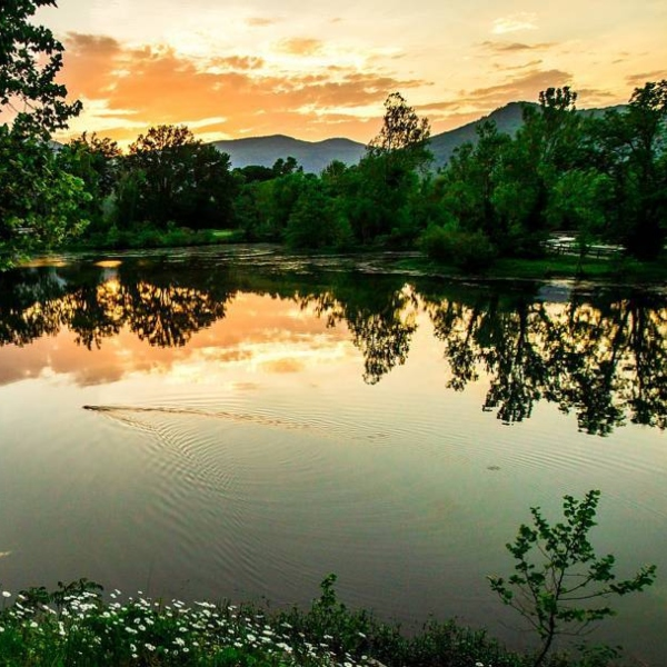 scenic view of Norris Lake Dam